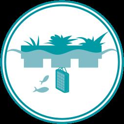 radeau végétalise